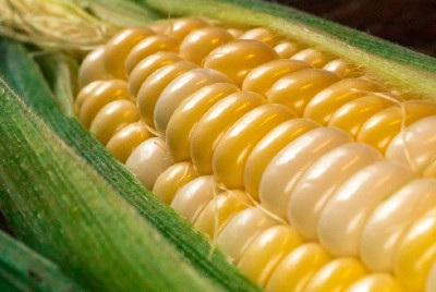 I love this time of the year as it is corn season…
