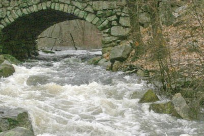 Why is a bridge and water such a good explanation of how people go wrong with business…