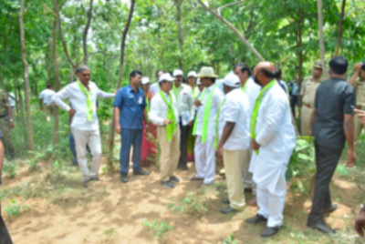 Nature-Based Solutions to Restore and Protect Forests in Telangana