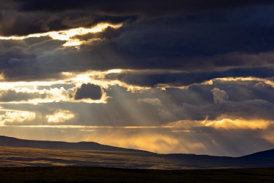 The Arctic National Wildlife Refuge Needs to be Permanently Protected