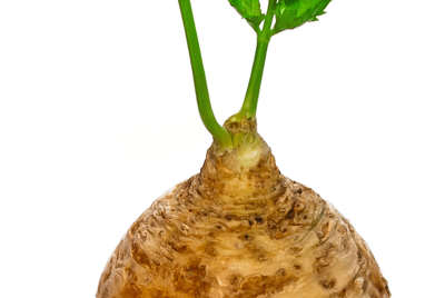 Celeriac—You're missing out!