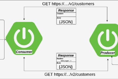 The communication between Spring Boot microservices over pageable API.