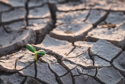 """""""Drought"""" Science-Research, October 2021, Week 3—summary from Wiley Online Library"""
