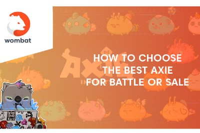 The ultimate guide to Axie Infinite Part I—How to choose the best Axie?