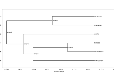 Phylogenetic Trees: Implement in Python
