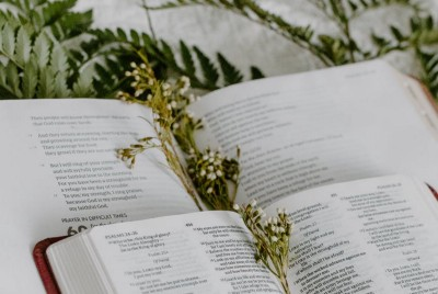 Five Common Phrases You Didn't Realize Were From the Bible
