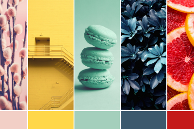 5 summer 2021 color palettes to help your brand stand out