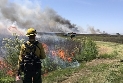 Using prescribed fire to improve habitat and save wildlife