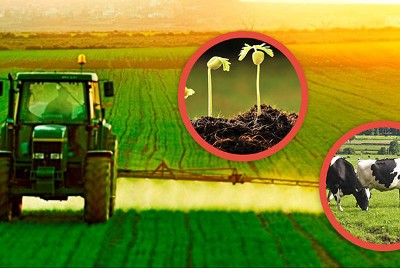 1) Agriculture, a lifeline for the sustainability of the population and economy of Pakistan.