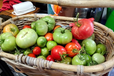 Last of the Summer Tomatoes