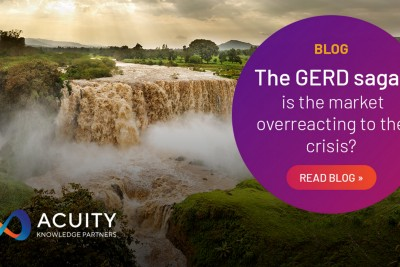 The GERD Saga—Is the Market Overreacting to the Crisis?