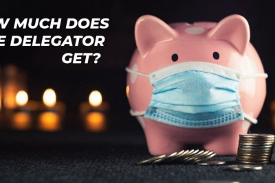 How many coins does a delegator get per day?