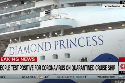 A Cruise Ship in a Sinking Industry