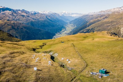 Getting to the roots: Alpine vegetation under climate change
