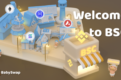 BabySwap's full-support: Hey you, welcome to BSC!