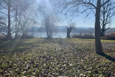 A Moving Experience: What's with Indian Summer this year?
