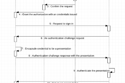 The Rise of new DID Authorization Mechanism in Client-Server model