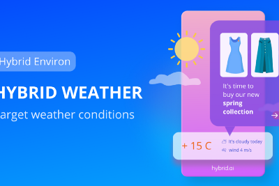Hybrid Weather. Target weather conditions.