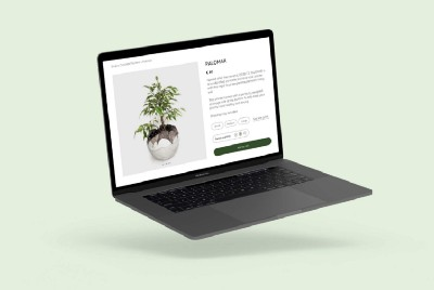 Dirty Roots Berlin: a better shopping experience for plant lovers