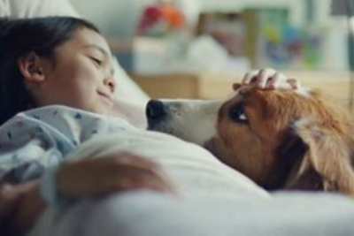 Do Dogs Really Bring Out The Best In Us Or Is The Little Girl In That Dog Food Commercial A Total…