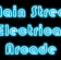 Main Street Electrical Arcade