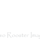 Two Rooster Images