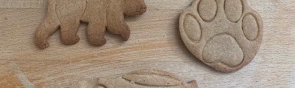 Three ginger biscuits in the shape of a bear, a paw print, and a racing car
