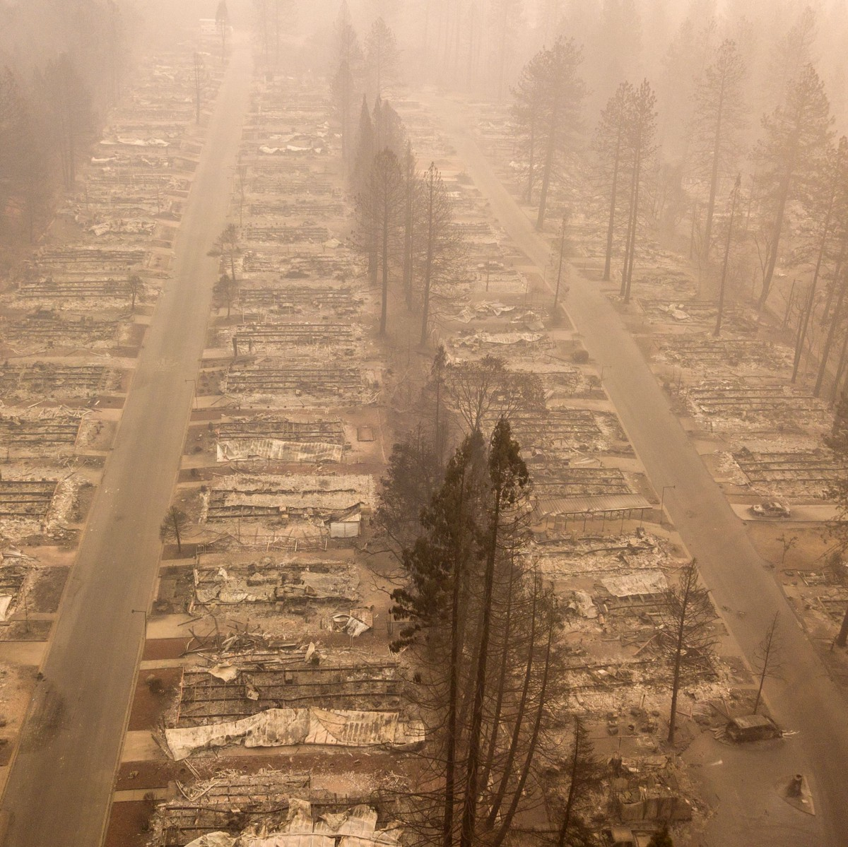 Could Climate Change Really End the World?