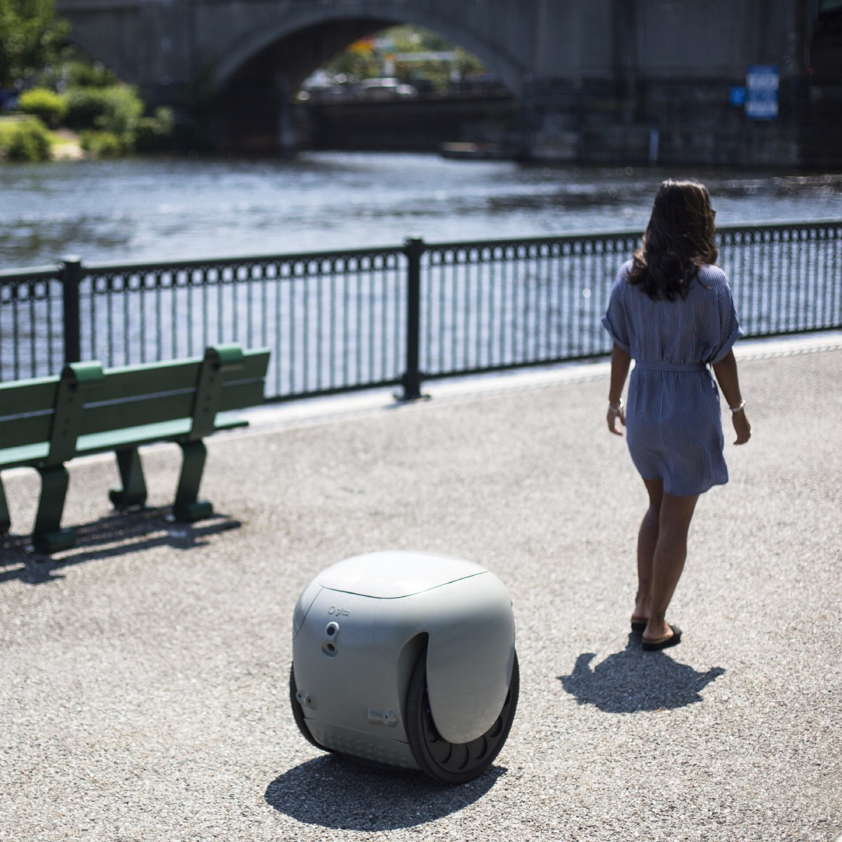 The First Useful Personal Robot Just Carries Your Stuff