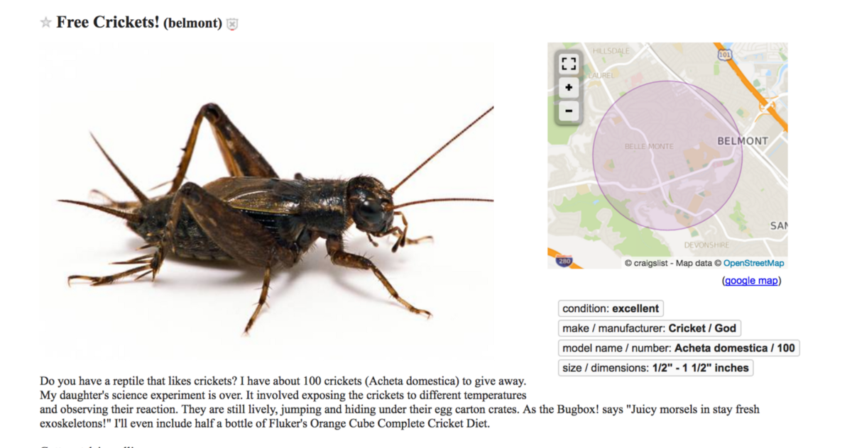 The Weirdest Things for Sale on Craigslist in the Bay Area ...