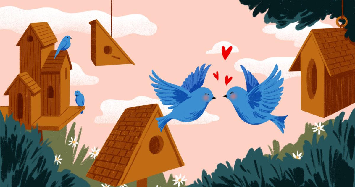 How Twitter Accidentally Became My Go-To Dating App