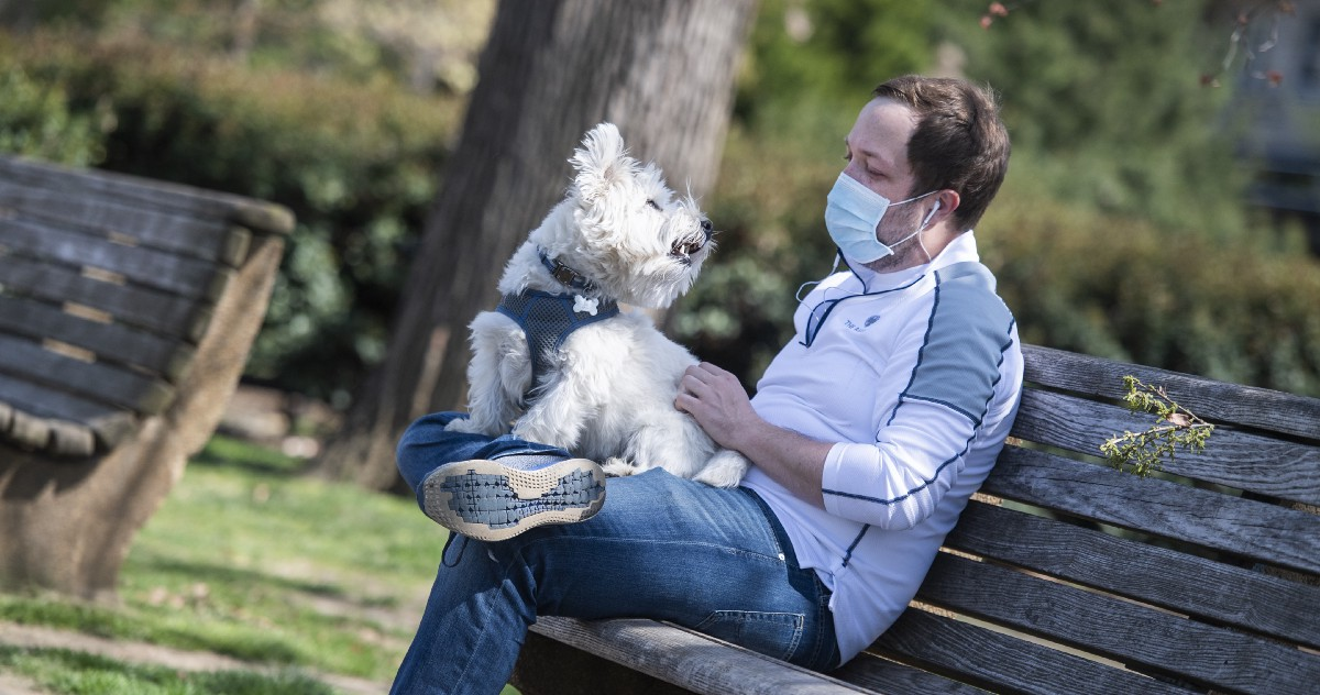 Cats, Dogs, and the Coronavirus: What You Need to Know