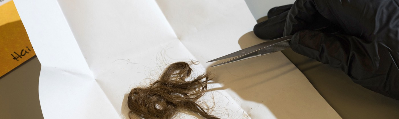A gloved hand holds a pair of tweezers close to a clump of hair that's sitting on sheet of white paper.