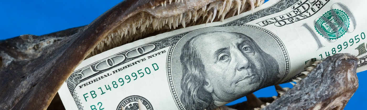 A close up of a fish with a one hundred dollar bill in its teeth