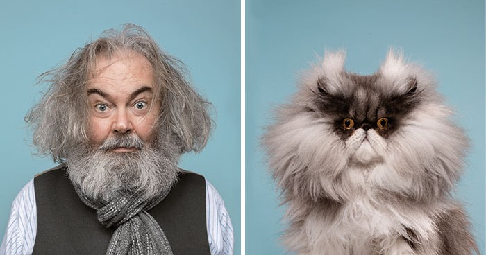 17 Pictures of Cats and the People Who Look Like Them