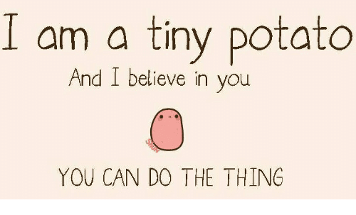 I am a tiny potato. And I believe in you. You can do the thing. Picture features a tiny potato. With eyes. And nose.