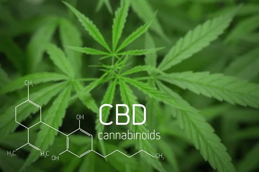 Is it Safe to Take CBD with Other Medications? CBD Drug Interactions