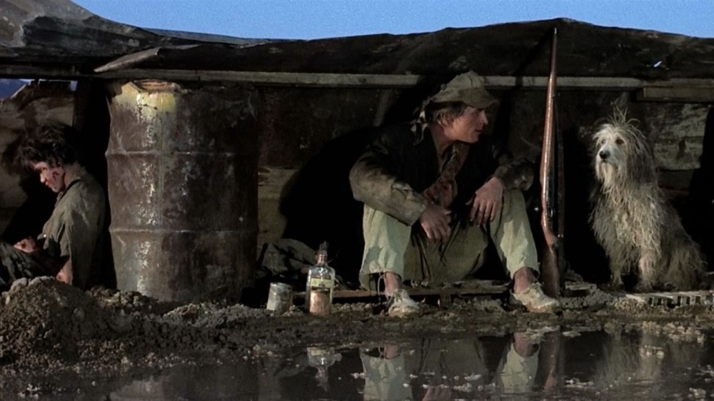 Scene from a post-apocolyptic movie in which a boy sits under a lean-to tarp with his rifle and dog.