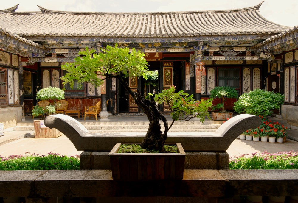Use The Ancient Japanese Art Of Small Gardening With Indoor Bonsai Plants To Decorate Your Home By Decorfo Medium