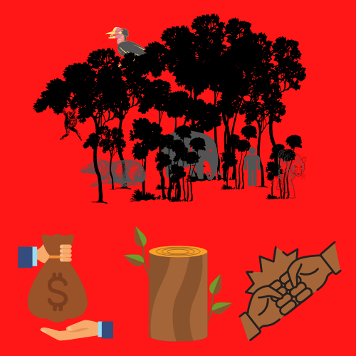 Illustration of animals in a forest with depictions of money, logging and power trade below.