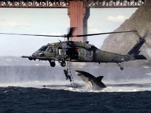 A hoax image of a helicopter and shark.