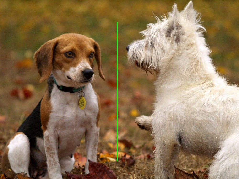 OpenCV-Python Cheat Sheet: From Importing Images to Face Detection