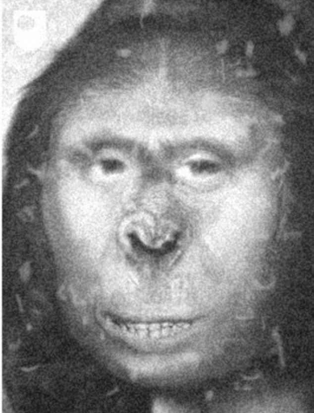 Black and white image that appears to be a photoshop blend of a monkey and mona lisa.