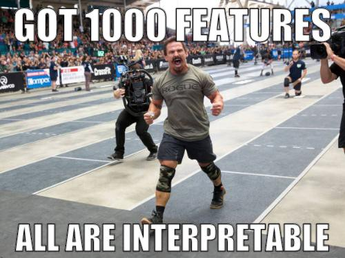 Got 1000 features all are interpretable meme