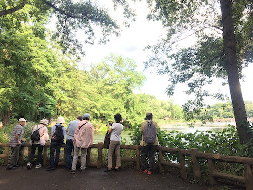 A group of birdwatchers I bumped into on a visit to Inokashira Park