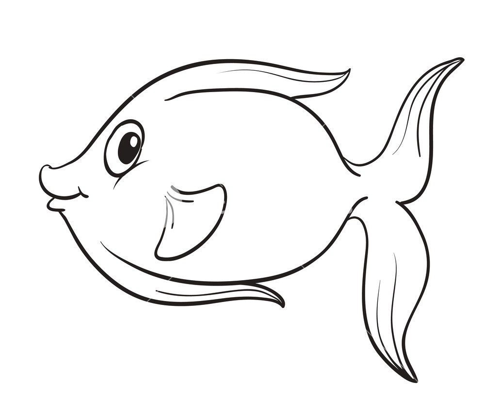 - Can A Fish Make You A Designer ?. Being A Designer It Is So