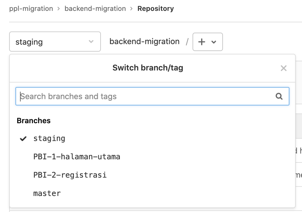 A screenshot of a list of branches currently in the author's group project git repository.