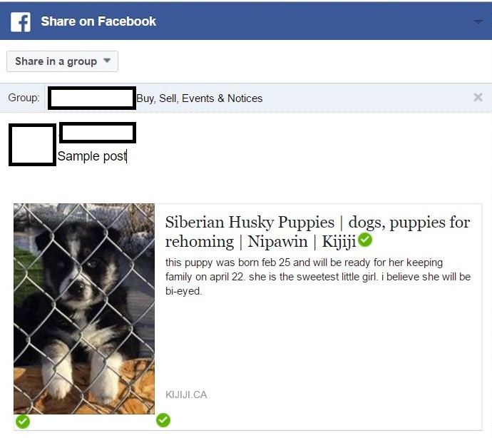 Why are ANIMAL FOR SALE Posts Being Deleted By Facebook?