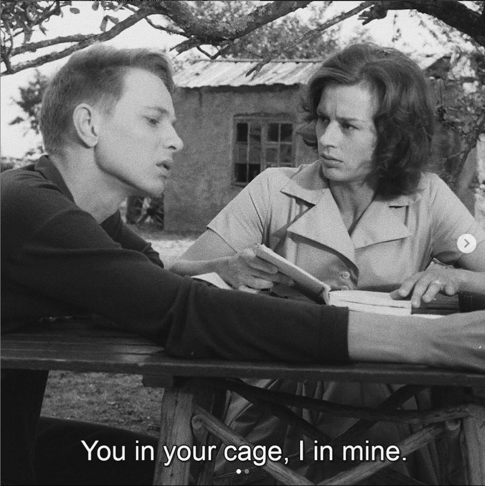 Screenshot from Ingmar Bergman's Through A Glass Darkly. A young man and woman sit at a picnic table, the woman holds a book in her hands. Subtitle reads: You in your cage, I in mine.