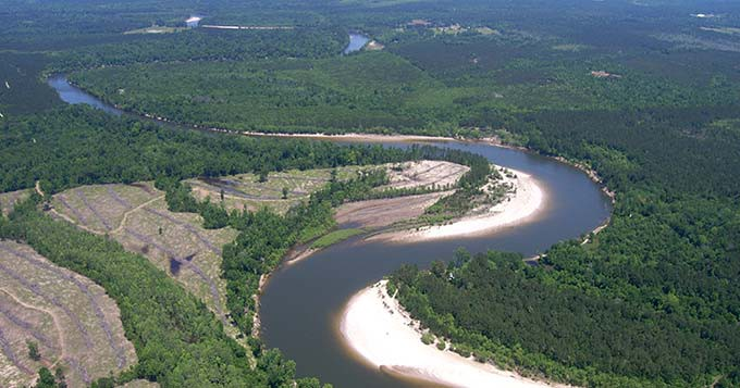 aerial photo of river winding through forest